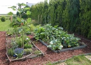 Mon blog a vient for Ca vient du jardin